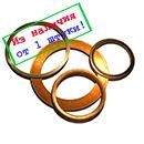 shaiba_mednaya.jpg